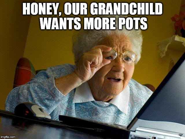 Grandma Finds The Internet Meme | HONEY, OUR GRANDCHILD WANTS MORE POTS | image tagged in memes,grandma finds the internet | made w/ Imgflip meme maker