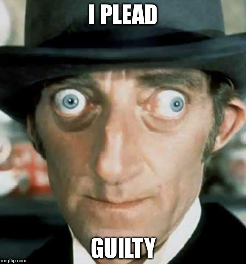 I PLEAD GUILTY | made w/ Imgflip meme maker