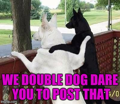 WE DOUBLE DOG DARE YOU TO POST THAT | made w/ Imgflip meme maker
