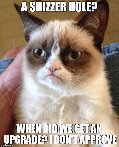 Grumpy Cat Meme | A SHIZZER HOLE? WHEN DID WE GET AN UPGRADE? I DON'T APPROVE | image tagged in memes,grumpy cat | made w/ Imgflip meme maker