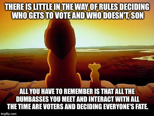 THERE IS LITTLE IN THE WAY OF RULES DECIDING WHO GETS TO VOTE AND WHO DOESN'T, SON ALL YOU HAVE TO REMEMBER IS THAT ALL THE DUMBASSES YOU ME | made w/ Imgflip meme maker
