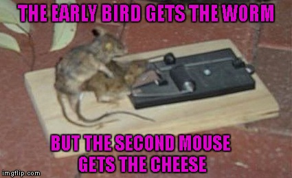 One of the things I've learned in life is that it's not always a good thing to be first. | THE EARLY BIRD GETS THE WORM BUT THE SECOND MOUSE GETS THE CHEESE | image tagged in mousetrap booty,memes,mousetrap,funny,funny animals,animals | made w/ Imgflip meme maker