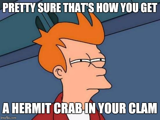 Futurama Fry Meme | PRETTY SURE THAT'S HOW YOU GET A HERMIT CRAB IN YOUR CLAM | image tagged in memes,futurama fry | made w/ Imgflip meme maker
