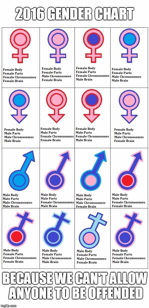 Coming to science books in elementary schools near you. | 2016 GENDER CHART BECAUSE WE CAN'T ALLOW ANYONE TO BE OFFENDED | image tagged in memes,gender equality | made w/ Imgflip meme maker
