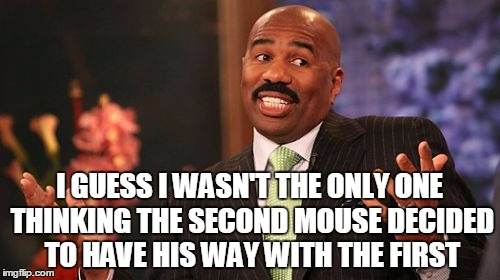 Steve Harvey Meme | I GUESS I WASN'T THE ONLY ONE THINKING THE SECOND MOUSE DECIDED TO HAVE HIS WAY WITH THE FIRST | image tagged in memes,steve harvey | made w/ Imgflip meme maker