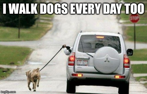 I WALK DOGS EVERY DAY TOO | made w/ Imgflip meme maker