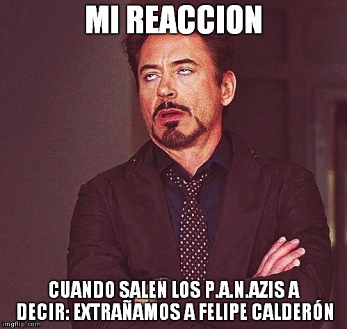 Robert Downey Jr Annoyed | MI REACCION CUANDO SALEN LOS P.A.N.AZIS A DECIR: EXTRAÑAMOS A FELIPE CALDERÓN | image tagged in robert downey jr annoyed | made w/ Imgflip meme maker