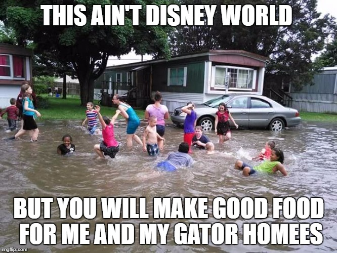 Redneck Swimming Pool | THIS AINu0027T DISNEY WORLD BUT YOU WILL MAKE GOOD FOOD