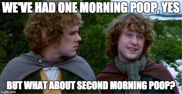 Merry and Pippin |  WE'VE HAD ONE MORNING POOP, YES; BUT WHAT ABOUT SECOND MORNING POOP? | image tagged in merry and pippin,AdviceAnimals | made w/ Imgflip meme maker
