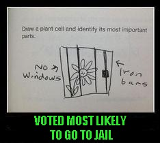 Damn, and I thought I had a rough time growing up. | VOTED MOST LIKELY TO GO TO JAIL | image tagged in children's view,memes,funny child answers,funny,ghetto child | made w/ Imgflip meme maker