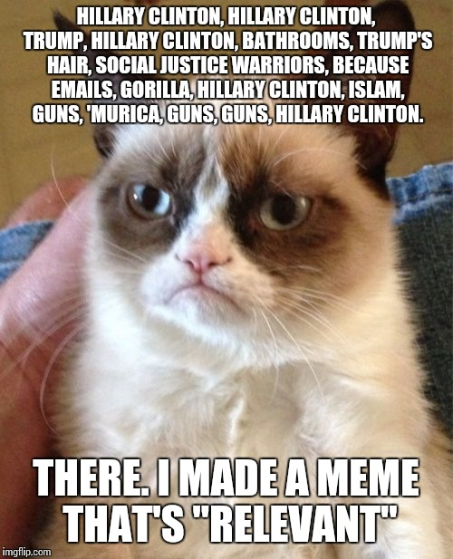 KEGDalsgarð, only here to keep up appearances. | HILLARY CLINTON, HILLARY CLINTON, TRUMP, HILLARY CLINTON, BATHROOMS, TRUMP'S HAIR, SOCIAL JUSTICE WARRIORS, BECAUSE EMAILS, GORILLA, HILLARY | image tagged in memes,grumpy cat | made w/ Imgflip meme maker