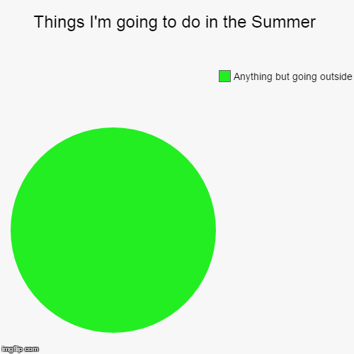 Things I'm going to do in the Summer | Anything but going outside | image tagged in funny,pie charts | made w/ Imgflip chart maker