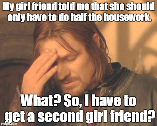 Frustrated Boromir |  My girl friend told me that she should only have to do half the housework. What? So, I have to get a second girl friend? | image tagged in memes,frustrated boromir | made w/ Imgflip meme maker