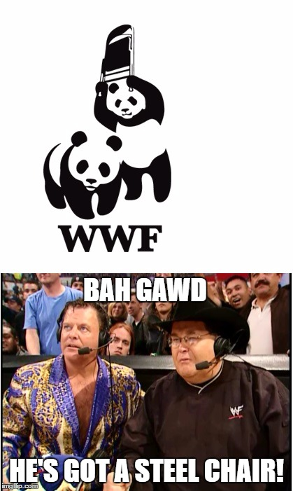 BAH GAWD; HE'S GOT A STEEL CHAIR! | image tagged in jim ross,jerry lawler,wwf,steel chair,panda | made w/ Imgflip meme maker