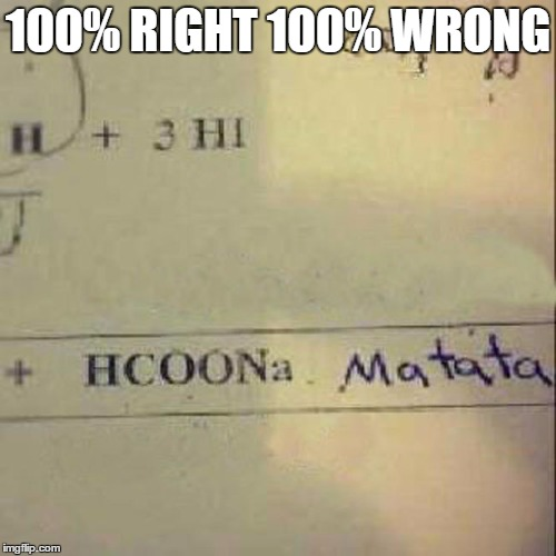 100% |  100% RIGHT 100% WRONG | image tagged in lion king,hacoona matata,100,school,exam,test | made w/ Imgflip meme maker