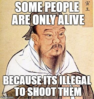 Wise Confucius | SOME PEOPLE ARE ONLY ALIVE BECAUSE ITS ILLEGAL TO SHOOT THEM | image tagged in wise confucius | made w/ Imgflip meme maker