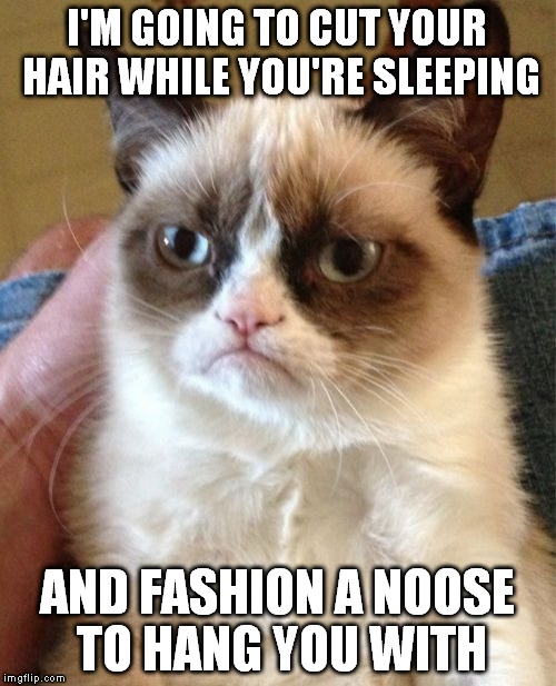Grumpy Cat Meme | I'M GOING TO CUT YOUR HAIR WHILE YOU'RE SLEEPING AND FASHION A NOOSE TO HANG YOU WITH | image tagged in memes,grumpy cat | made w/ Imgflip meme maker