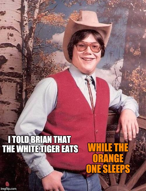 I TOLD BRIAN THAT THE WHITE TIGER EATS WHILE THE ORANGE ONE SLEEPS | made w/ Imgflip meme maker