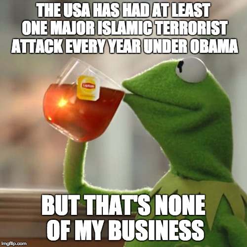 But Thats None Of My Business Meme | THE USA HAS HAD AT LEAST ONE MAJOR ISLAMIC TERRORIST ATTACK EVERY YEAR UNDER OBAMA BUT THAT'S NONE OF MY BUSINESS | image tagged in memes,but thats none of my business,kermit the frog | made w/ Imgflip meme maker