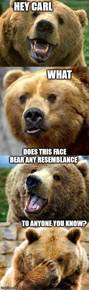 Bad Pun Bear |  HEY CARL                                                                                       WHAT; DOES THIS FACE BEAR ANY RESEMBLANCE                                                                                                                                                                                          TO ANYONE YOU KNOW? | image tagged in bear | made w/ Imgflip meme maker