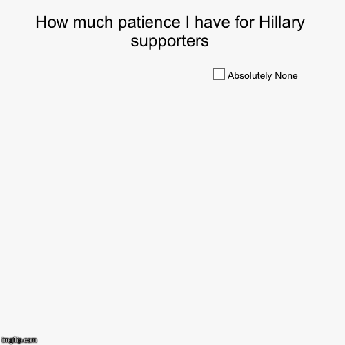 Another douchy Hillary pie chart... | How much patience I have for Hillary supporters | Absolutely None | image tagged in funny,pie charts | made w/ Imgflip pie chart maker