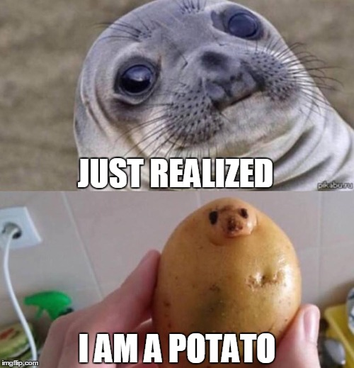 That Awkward Moment | JUST REALIZED I AM A POTATO | image tagged in food faces,awkward moment sealion,awkward,wranglerstar,youtuber,potato | made w/ Imgflip meme maker