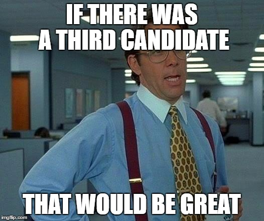 That Would Be Great Meme | IF THERE WAS A THIRD CANDIDATE THAT WOULD BE GREAT | image tagged in memes,that would be great | made w/ Imgflip meme maker