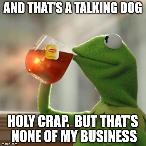 But Thats None Of My Business Meme | AND THAT'S A TALKING DOG HOLY CRAP.  BUT THAT'S NONE OF MY BUSINESS | image tagged in memes,but thats none of my business,kermit the frog | made w/ Imgflip meme maker