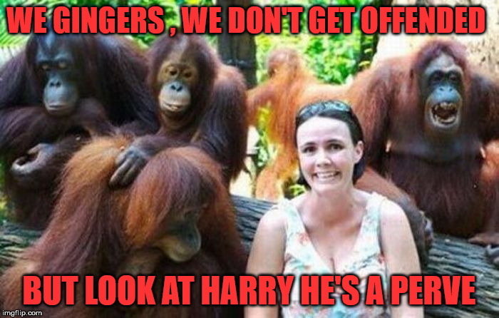 WE GINGERS , WE DON'T GET OFFENDED BUT LOOK AT HARRY HE'S A PERVE | made w/ Imgflip meme maker