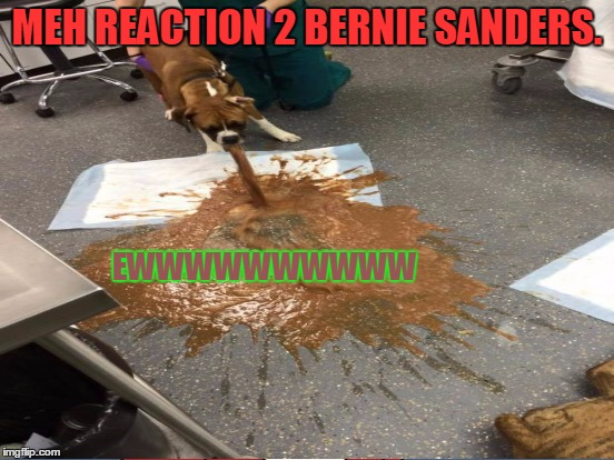 MEH REACTION 2 BERNIE SANDERS. EWWWWWWWWWW | made w/ Imgflip meme maker