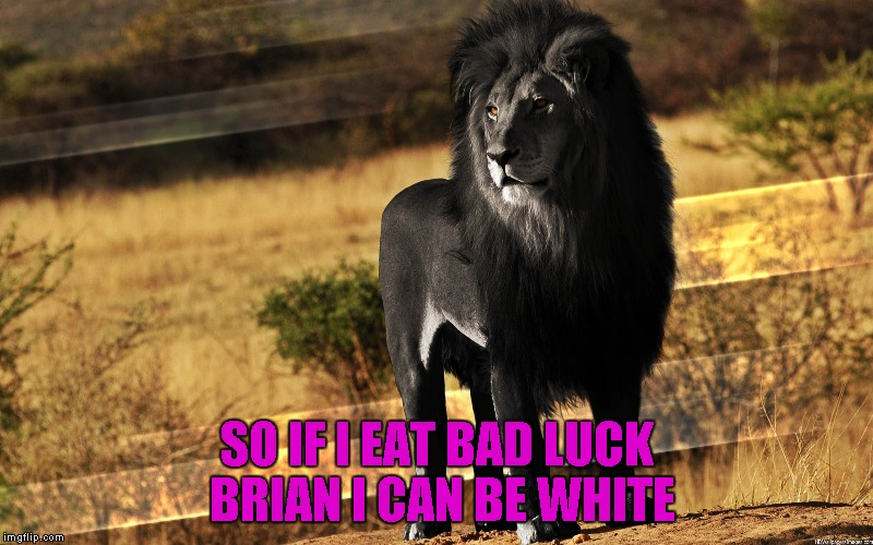 SO IF I EAT BAD LUCK BRIAN I CAN BE WHITE | made w/ Imgflip meme maker