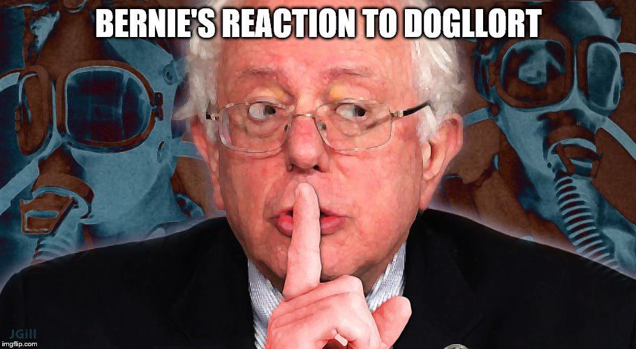 Bernie Shh | BERNIE'S REACTION TO DOGLLORT | image tagged in bernie shh | made w/ Imgflip meme maker