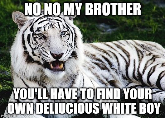 NO NO MY BROTHER YOU'LL HAVE TO FIND YOUR OWN DELIUCIOUS WHITE BOY | made w/ Imgflip meme maker