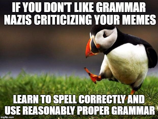 Nobody's perfect, but there's no excuse for not knowing the difference between 'your' and 'you're' or 'then' and 'than.' | IF YOU DON'T LIKE GRAMMAR NAZIS CRITICIZING YOUR MEMES LEARN TO SPELL CORRECTLY AND USE REASONABLY PROPER GRAMMAR | image tagged in memes,unpopular opinion puffin | made w/ Imgflip meme maker