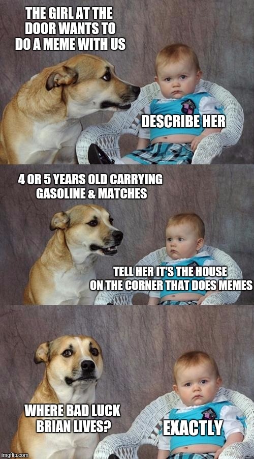 Dad Joke Dog | THE GIRL AT THE DOOR WANTS TO DO A MEME WITH US WHERE BAD LUCK BRIAN LIVES? DESCRIBE HER 4 OR 5 YEARS OLD CARRYING GASOLINE & MATCHES TELL H | image tagged in memes,dad joke dog | made w/ Imgflip meme maker