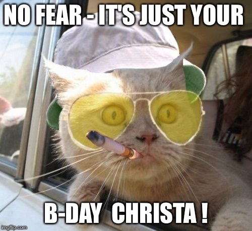 Fear And Loathing Cat | NO FEAR - IT'S JUST YOUR B-DAY  CHRISTA ! | image tagged in memes,fear and loathing cat | made w/ Imgflip meme maker