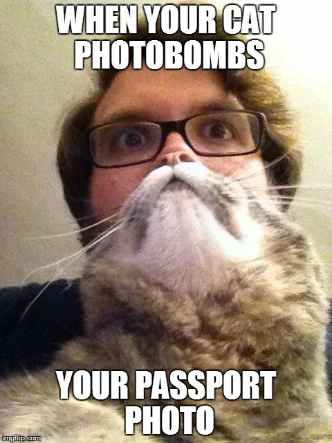 Surprised CatMan | WHEN YOUR CAT PHOTOBOMBS YOUR PASSPORT PHOTO | image tagged in memes,surprised catman | made w/ Imgflip meme maker