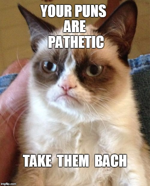 Grumpy Cat Meme | YOUR PUNS ARE  PATHETIC TAKE  THEM  BACH | image tagged in memes,grumpy cat | made w/ Imgflip meme maker
