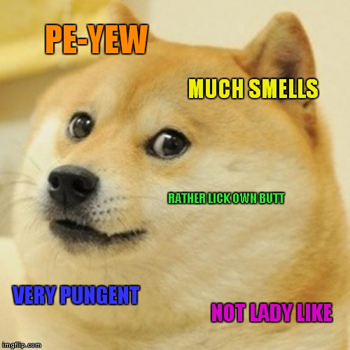 Doge Meme | PE-YEW MUCH SMELLS RATHER LICK OWN BUTT VERY PUNGENT NOT LADY LIKE | image tagged in memes,doge | made w/ Imgflip meme maker