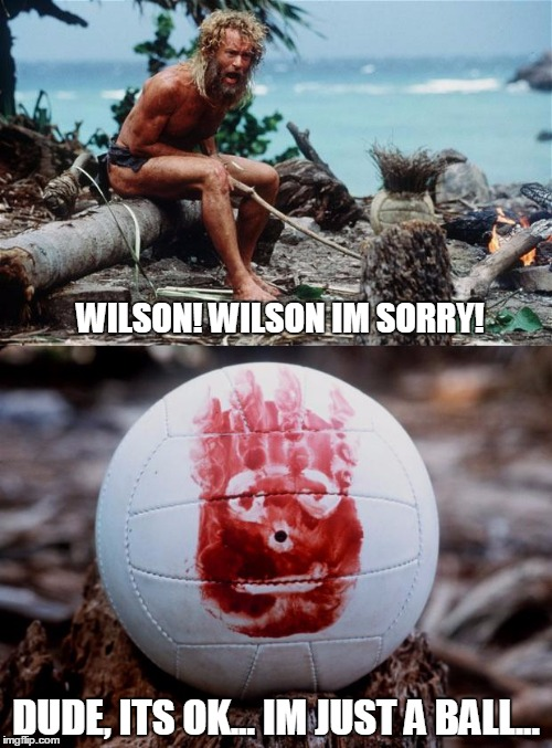 What Wilson is always thinking. | WILSON! WILSON IM SORRY! DUDE, ITS OK... IM JUST A BALL... | image tagged in wilson replies | made w/ Imgflip meme maker