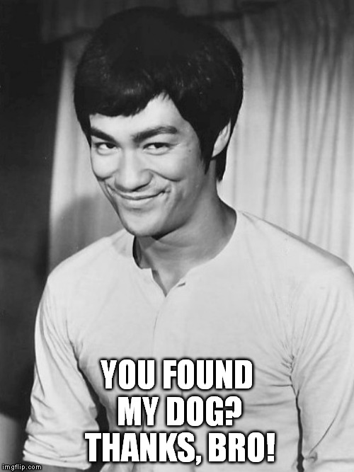 YOU FOUND MY DOG? THANKS, BRO! | image tagged in black and white bruce lee smiling | made w/ Imgflip meme maker