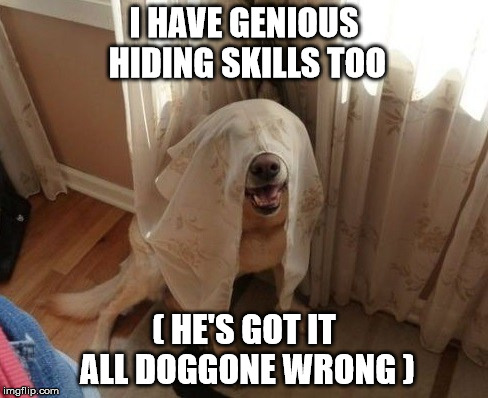 I HAVE GENIOUS HIDING SKILLS TOO ( HE'S GOT IT ALL DOGGONE WRONG ) | made w/ Imgflip meme maker