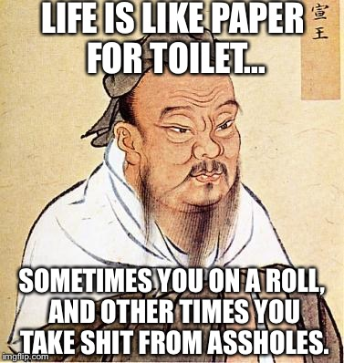 Confucius Say:  | LIFE IS LIKE PAPER FOR TOILET... SOMETIMES YOU ON A ROLL, AND OTHER TIMES YOU TAKE SHIT FROM ASSHOLES. | image tagged in wise confucius,memes,nsfw | made w/ Imgflip meme maker