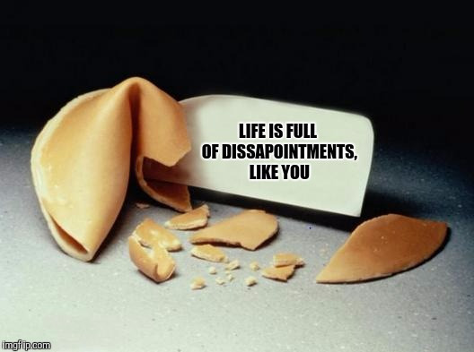 Unfortunate cookie | LIFE IS FULL OF DISSAPOINTMENTS, LIKE YOU | image tagged in fortune cookie,sewmyeyesshut,funny memes | made w/ Imgflip meme maker