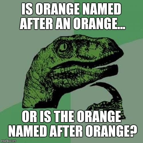 Philosoraptor |  IS ORANGE NAMED AFTER AN ORANGE... OR IS THE ORANGE NAMED AFTER ORANGE? | image tagged in memes,philosoraptor | made w/ Imgflip meme maker