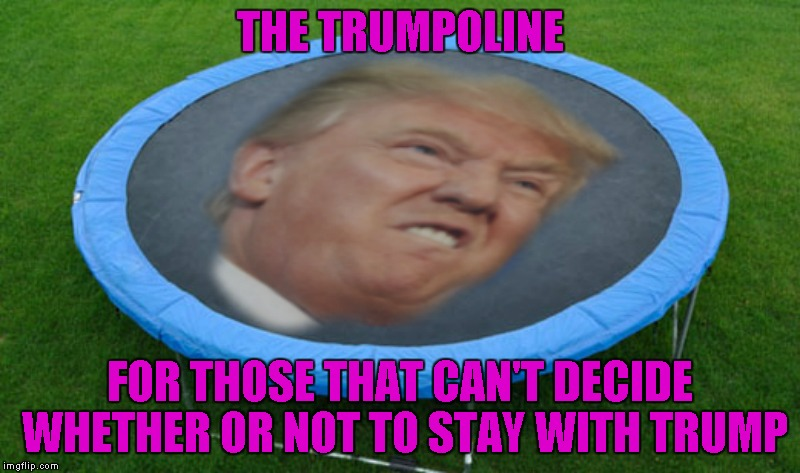 Admit it...you know you want one. | THE TRUMPOLINE FOR THOSE THAT CAN'T DECIDE WHETHER OR NOT TO STAY WITH TRUMP | image tagged in trumpoline,memes,funny,trumpkin,trampoline,political joke | made w/ Imgflip meme maker