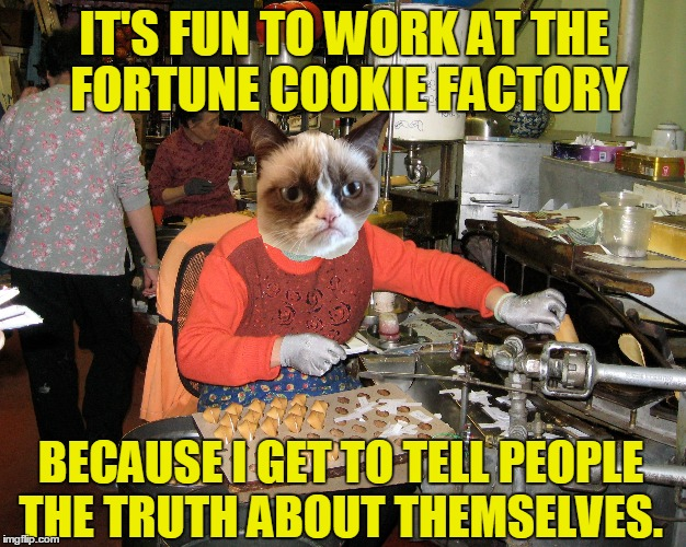 IT'S FUN TO WORK AT THE FORTUNE COOKIE FACTORY BECAUSE I GET TO TELL PEOPLE THE TRUTH ABOUT THEMSELVES. | made w/ Imgflip meme maker