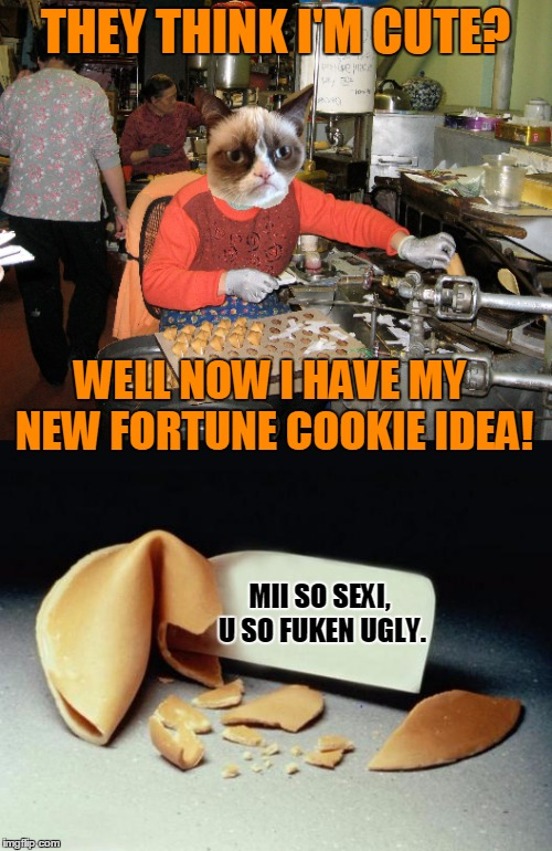 THEY THINK I'M CUTE? WELL NOW I HAVE MY NEW FORTUNE COOKIE IDEA! MII SO SEXI, U SO FUKEN UGLY. | made w/ Imgflip meme maker