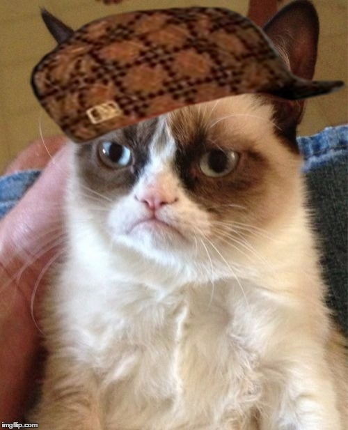Grumpy Cat Meme | image tagged in memes,grumpy cat,scumbag | made w/ Imgflip meme maker