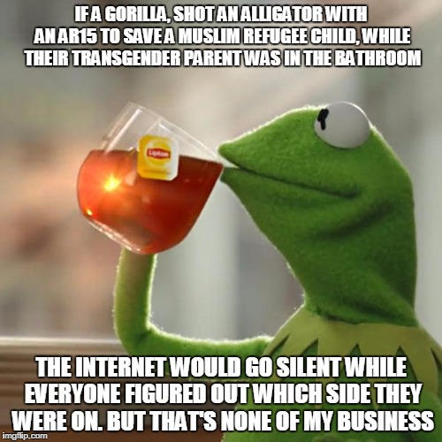 But Thats None Of My Business | IF A GORILLA, SHOT AN ALLIGATOR WITH AN AR15 TO SAVE A MUSLIM REFUGEE CHILD, WHILE THEIR TRANSGENDER PARENT WAS IN THE BATHROOM THE INTERNET | image tagged in memes,but thats none of my business,kermit the frog | made w/ Imgflip meme maker